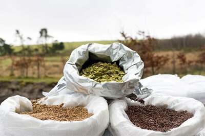 Malt and hops