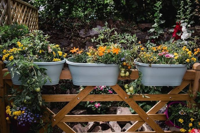 Garden at the Bell Inn